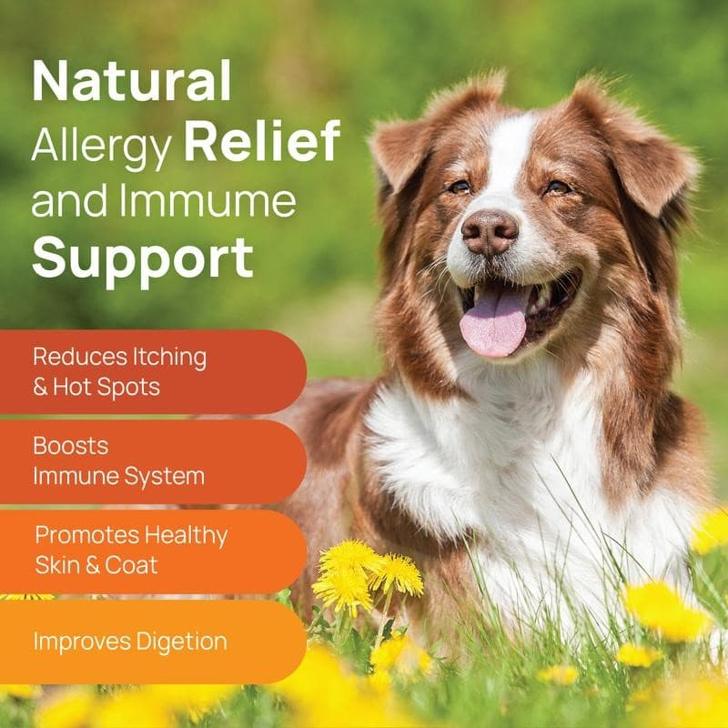 Allergy Chews - Helps with Allergies